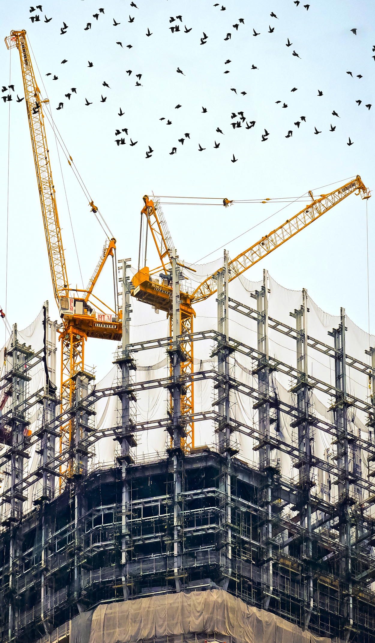 Construction Domains & Digital Real Estate For Purchase